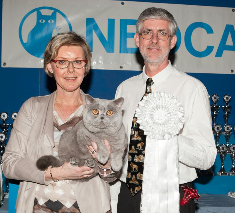 Winner Worldchampion Top Ten op de grote Neocat Wereldshow